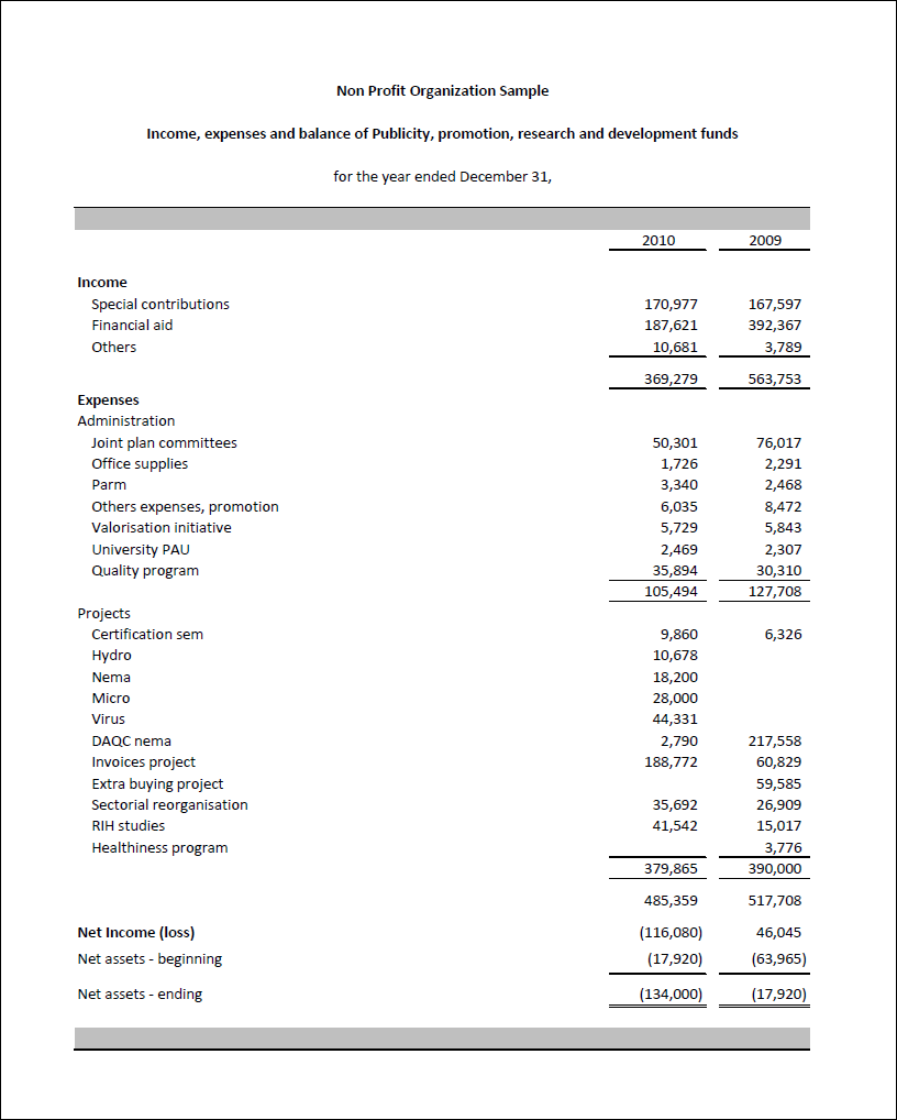 Non Profit Financial Statement Template Excel Zrom